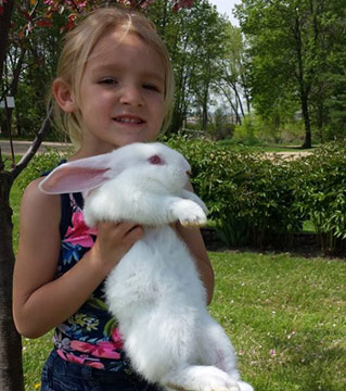Flemish-Giant-Rabbit-White